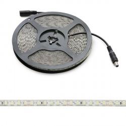 Tira de 600 LEDs SMD2835 24VDC IP65 Exterior