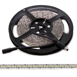 Tira de LEDs 12VDC SMD3528 240LEDs/M  14W/M IP25 5M