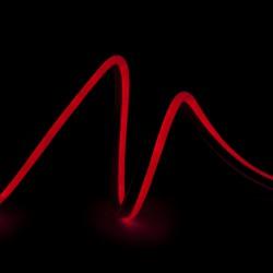 Manguera de LEDs Neon Flex 80 LEDs/M 4,5W/M 24VDC IP66 Rojo