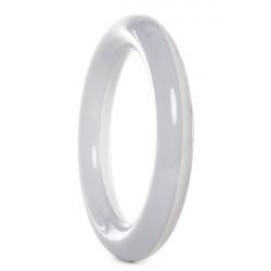Tubo Circular de LEDs Ø225mm 12W 1050Lm 30.000H