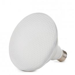 Lámpara Bombilla de LEDs PAR38 E27 Estanca IP65 12W 1080Lm 30.000H