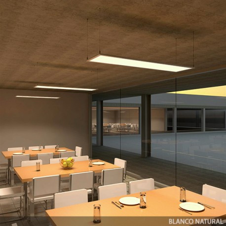 ECOLINE LED Panel 1200x300x12mm 42W 2650Lm 30.000H
