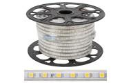Tira LED 60 /M 220VAC 50M SMD5050 IP65
