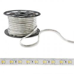 Tira de LEDs 230VAC SMD2835 120LEDs 12W/Metro Cálido/Frío IP65 (Por Metros)