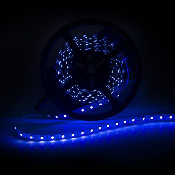 Tira de 300 leds smd5050 12vdc 60w ip65 color ultravioleta for Tiras led de colores
